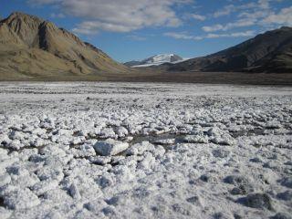 Arctic Spring Site on Axel Heiberg Island