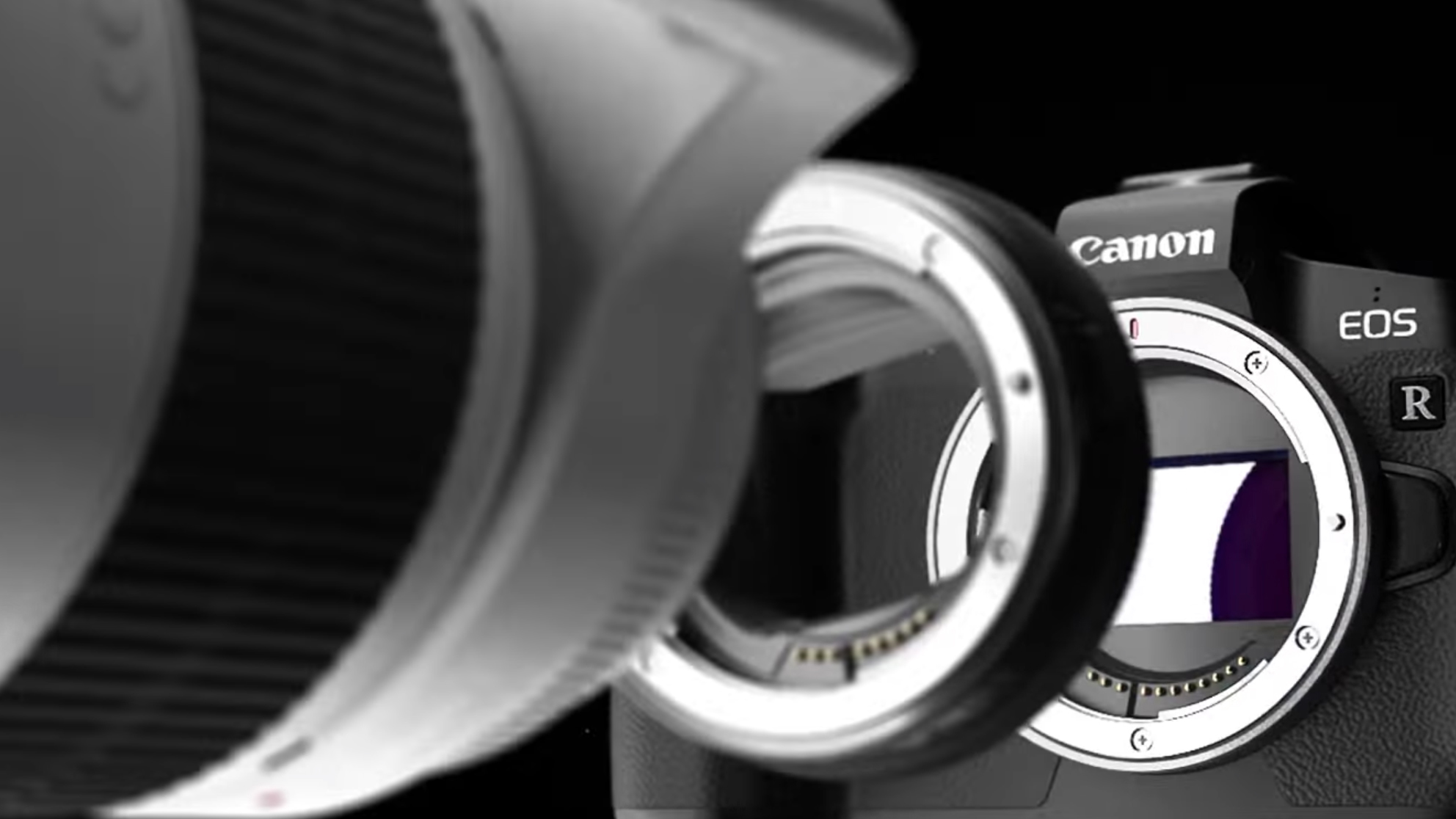 Fresh rumors that Canon will release a pro-level EOS R