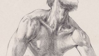 How to draw a neck and shoulders