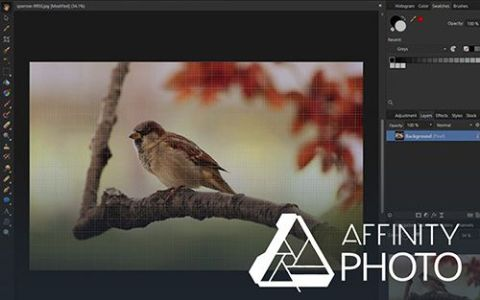 Affinity Photo Review - Pros, Cons and Verdict | Top Ten Reviews