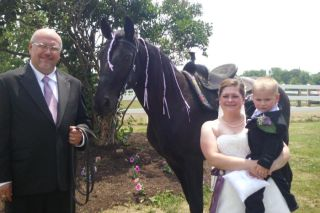 soring, horses, Corrin Zumwalt, Major