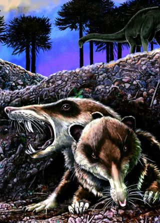 illustration of newly discovered saber-toothed squirrel