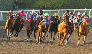 horses, kentucky derby, racing
