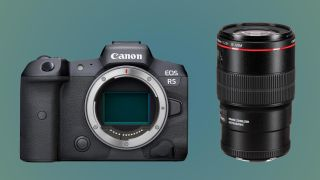 canon eos r5 camera with canon ef 100mm macro f/2.8l IS USM