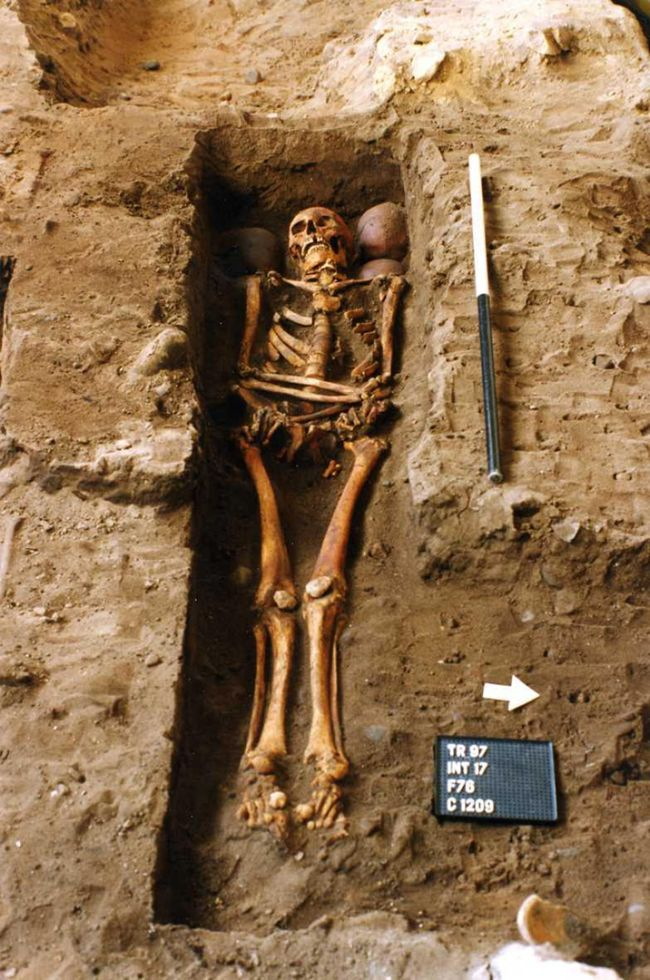 A coffin in the Scottish highlands held two complete skeletons and additional skulls.