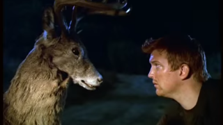 Queens Of The Stone Age get into a fight with a deer