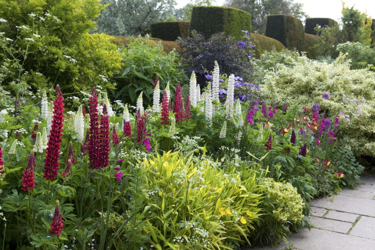 20 tips for beautiful garden borders | Real Homes