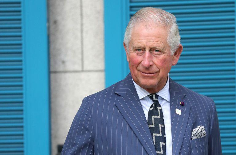 prince charles surprise japan ambassador royal harpist