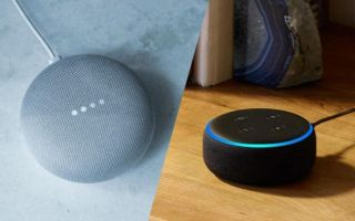 Amazon Echo Dot and Google Home Mini.
