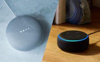 Amazon Echo Dot and Google Home Mini.