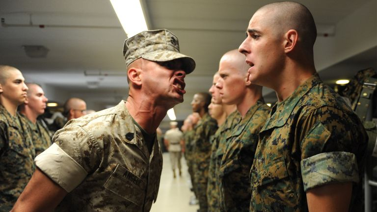 The military diet: US soldier yelling at recruit