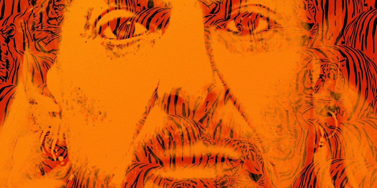 Tiger King: Murder, Mayhem, And Madness poster