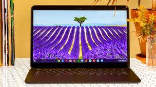 laptop vs. chromebook
