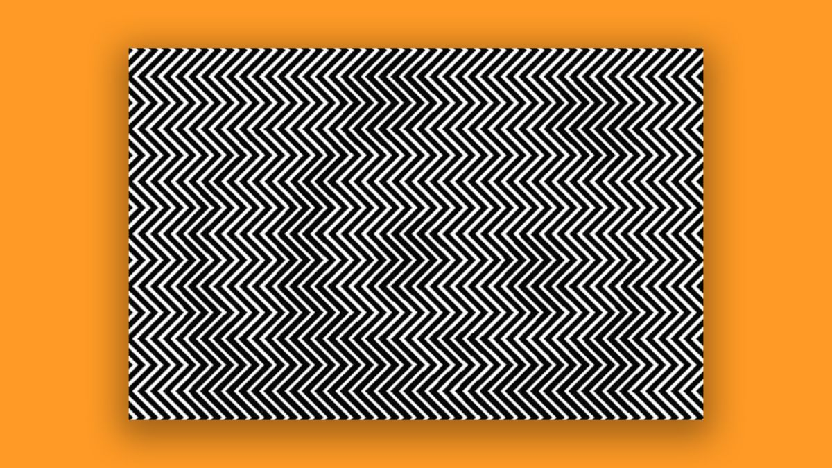 The mind-blowing optical illusion with a serious message