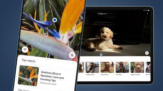 Google Lens iPhone and iPad