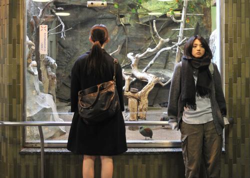 A Piece of Our Life - Eriko Nakamura & Hikari Mitsushima