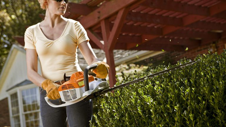 Best Hedge Trimmer 2019 Trim And Shape With The Best
