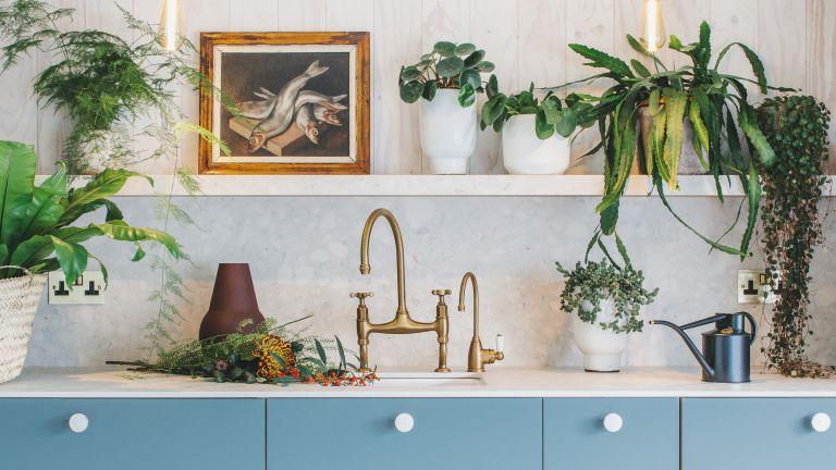 Husk cabinets in an ikea kitchen