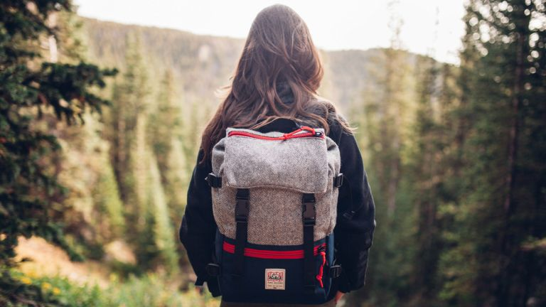 73c4500a6a Best backpacks 2019: stylish backpacks for school, your commute, or ...