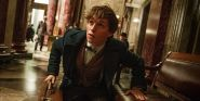 Newt Scamander's Backstory: What You Need To Know About The Fantastic Beasts Hero