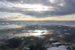Sea ice in the Arctic's Chukchi Sea