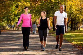 exercise-park-101206-02