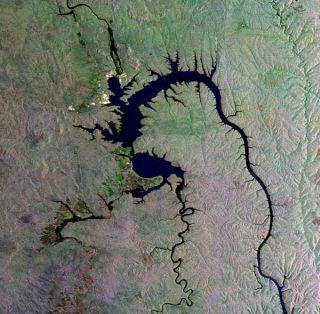 siberia-gecko-dam-101230-02