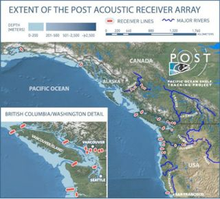 marine-trackers-map-post-array-100901-02