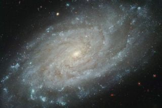 Is this what our own Milky Way Galaxy looks like from far away? Similar in size and design to our home galaxy, spiral galaxy NGC 3370 is about 100 million light-years away, toward the constellation Leo.