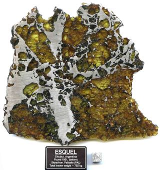 The Esquel meteorite, consisting of iron-nickel and olivine, was discovered in central Argentina. It