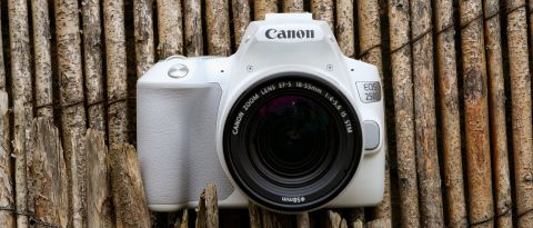 Canon EOS Rebel SL3 / EOS 250D review | TechRadar