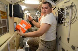 Meat Grown in Space for the First Time Ever