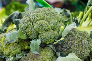 A healthy bunch of broccoli.
