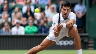Novak Djokovic vs Denis Shapovalov live stream
