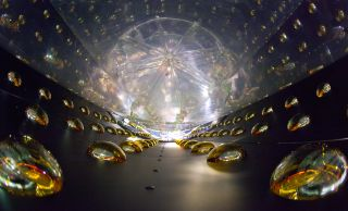 The inside of a cylindrical antineutrino detector to detect rare fundamental particles.