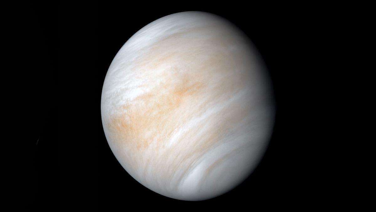 Did a migrating Jupiter turn Venus into hell?