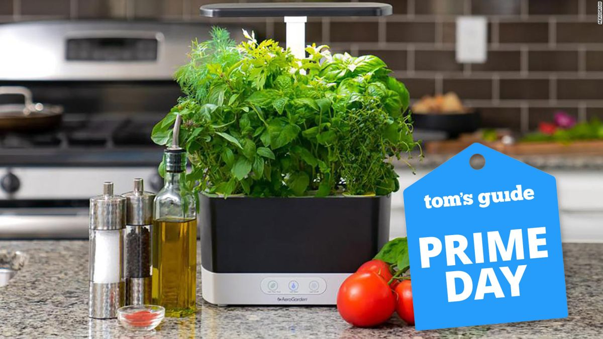Grow your own vegetables with this Prime Day deal on AeroGardens Harvest