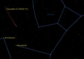 Comet Garradd will be visible in binoculars and small telescopes all through October in constellation Hercules.