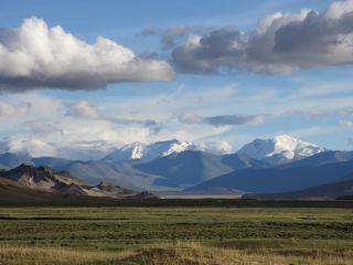 tibetan plateau oldest prints