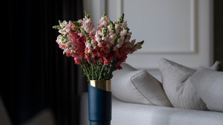 Mother's Day gift guide: Coral Snapdragons bouquet from Bloom in living room