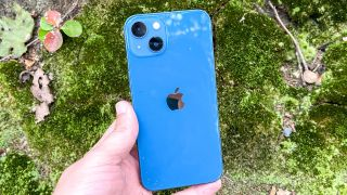 A blue iPhone 13 held in front of green foliage