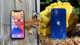 iPhone 12 mini vs. iPhone 12