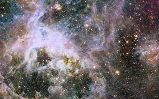 Tarantula Nebula Hubble View in Infrared Light