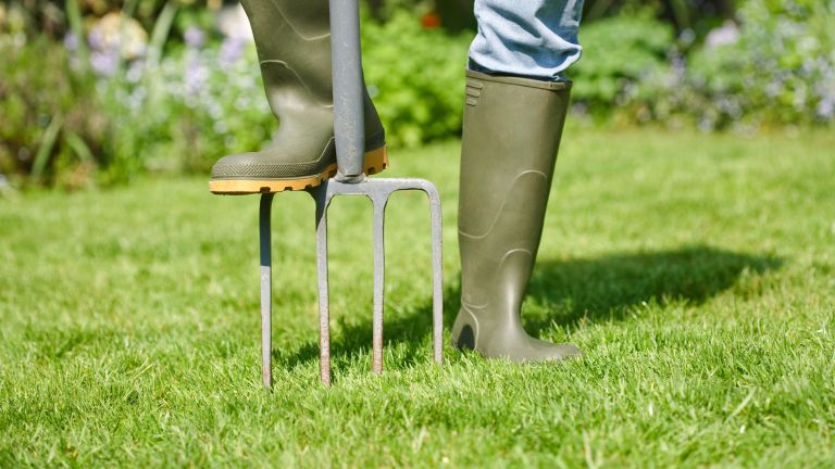 how to aerate a lawn with a garden fork