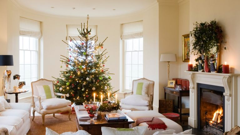 where to buy a Christmas tree online