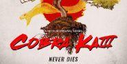 Why One Cobra Kai Star Was 'Nervous' When Returning To Set For Season 4