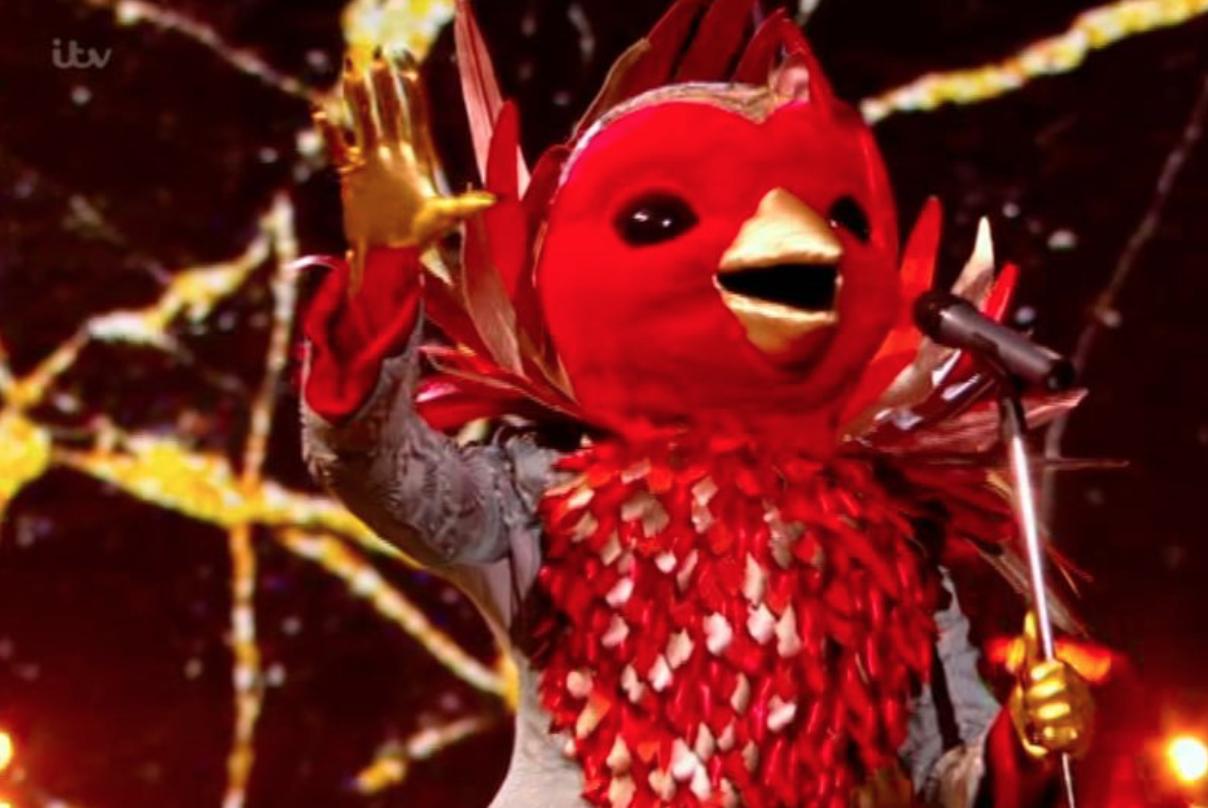 The masked singer Robin