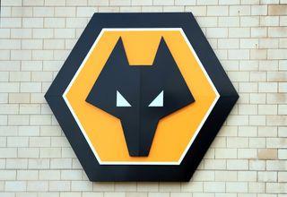 Wolverhampton Wanderers v Southampton – Premier League – Molineux