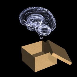 X-ray-like image of brain hovering above cardboard box