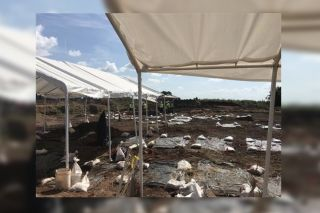 This historic cemetery was discovered during a construction project in Sugar Land, Texas.